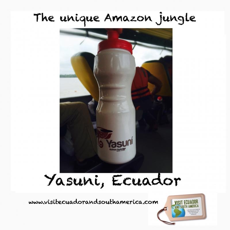 Yasuni 2 / #visitsamerica /visitecuadorandsouthamerica.com