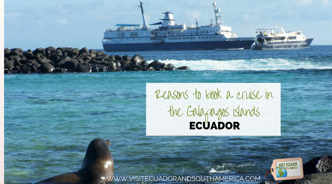 Reasons to book a cruise in the Galapagos islands, Ecuador