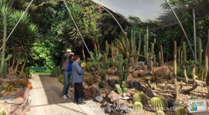 Quito_Botanical_Garden