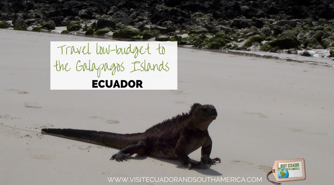 Travel low-budget to the Galapagos Islands in Ecuador
