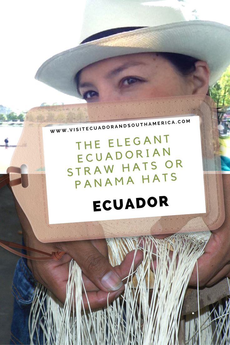 the-elegant-ecuadorian-straw-hats-or-panama-hats