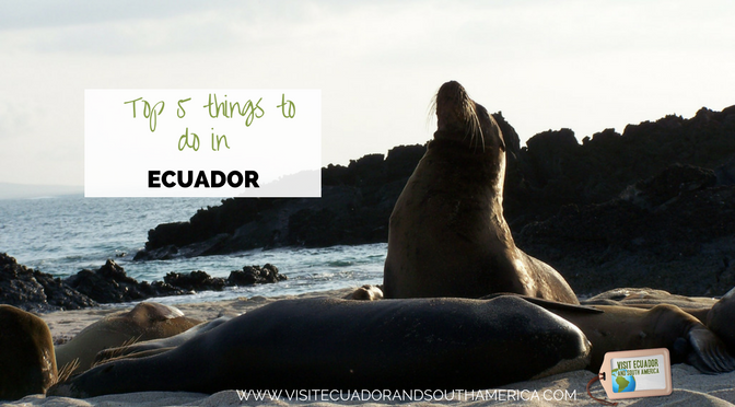Top 5 things to do in Ecuador