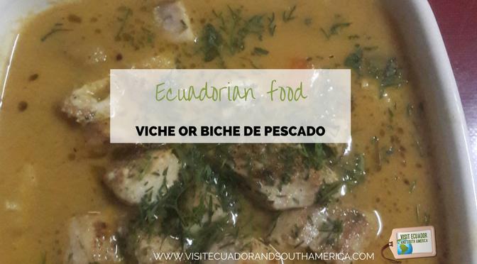 Ecuadorian food: biche or viche de pescado