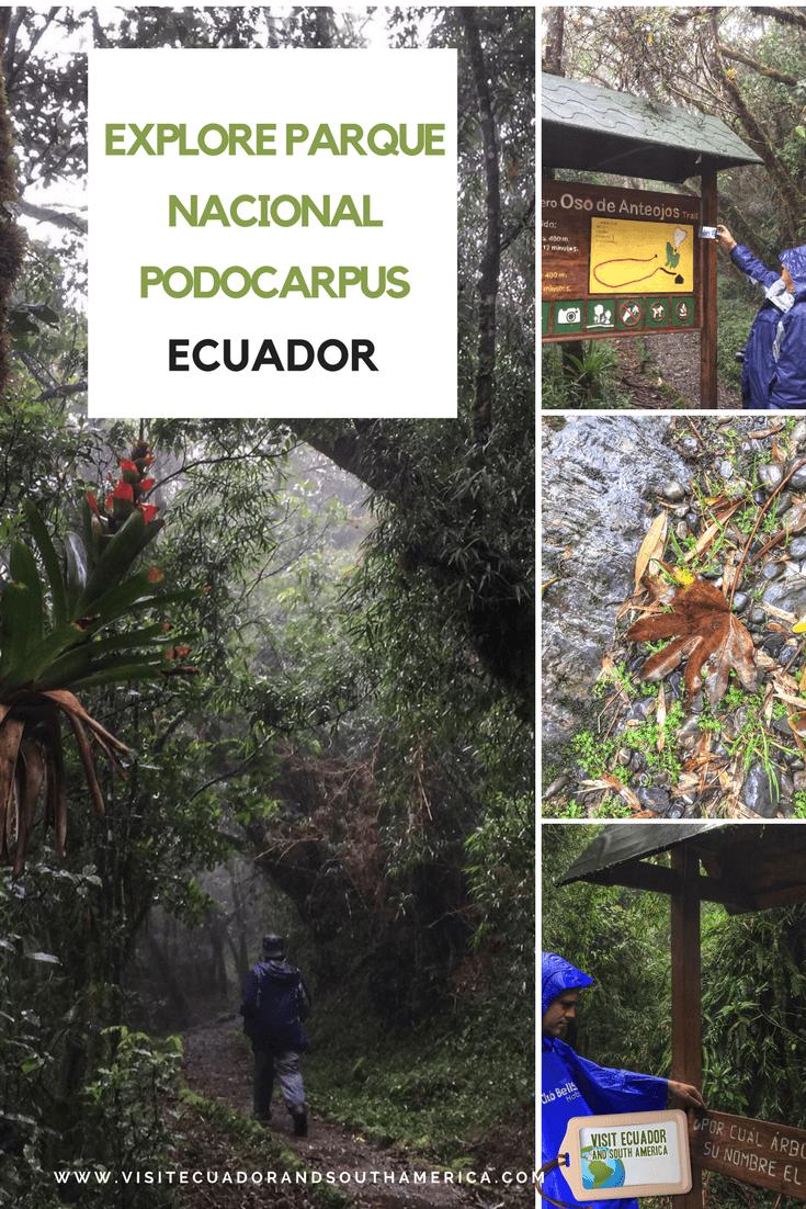 parque nacional podocarpus (2)