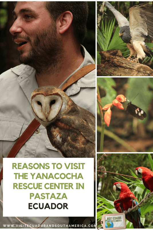 Yanacocha rescue center