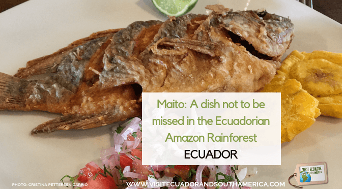 Maito: A dish not to be missed in the Ecuadorian Amazon Rainforest