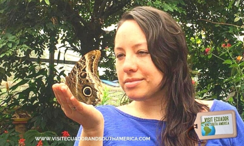 butterfly farm mindo (1)