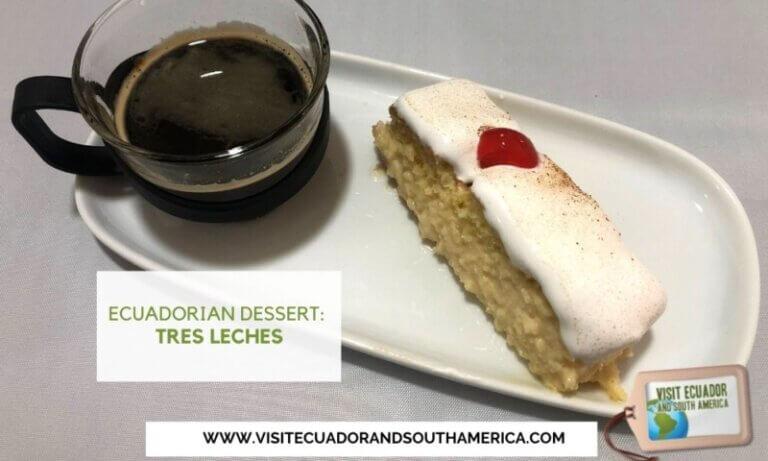 Ecuadorian dessert tres leches Ecuador (1)