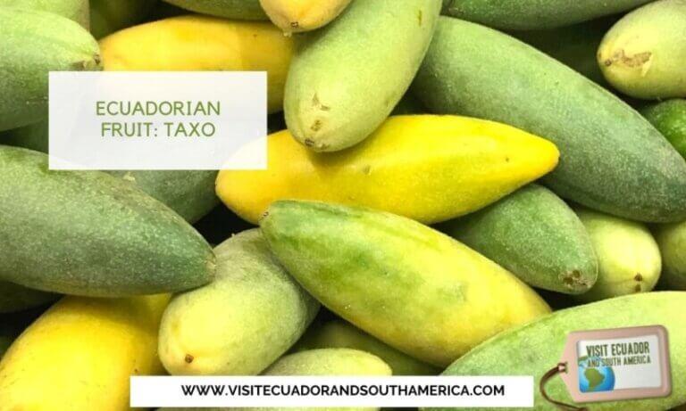 Taxo Ecuador Ecuadorian fruit (3)