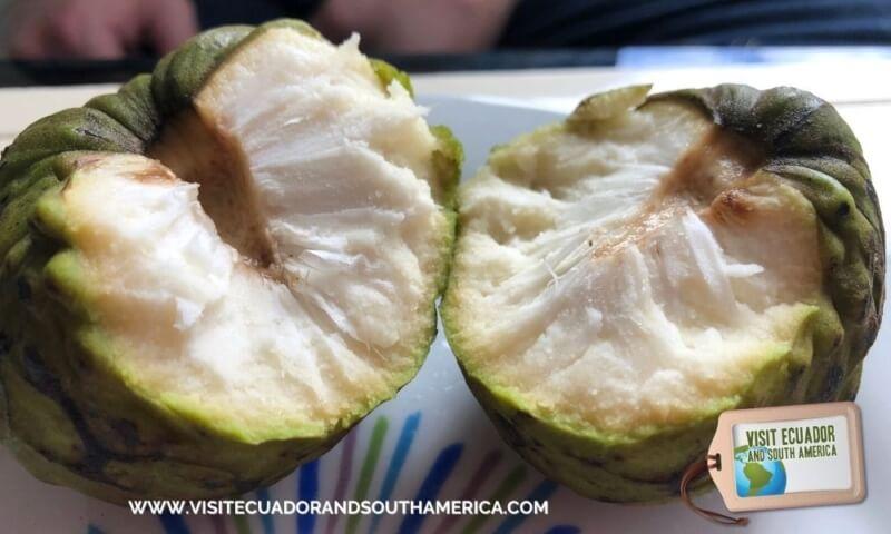 What is cherimoya fruit or chirimoya