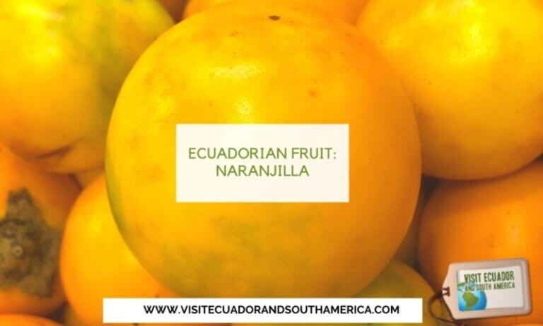 naranjilla ecuadorian fruit ecuador fruits (1)
